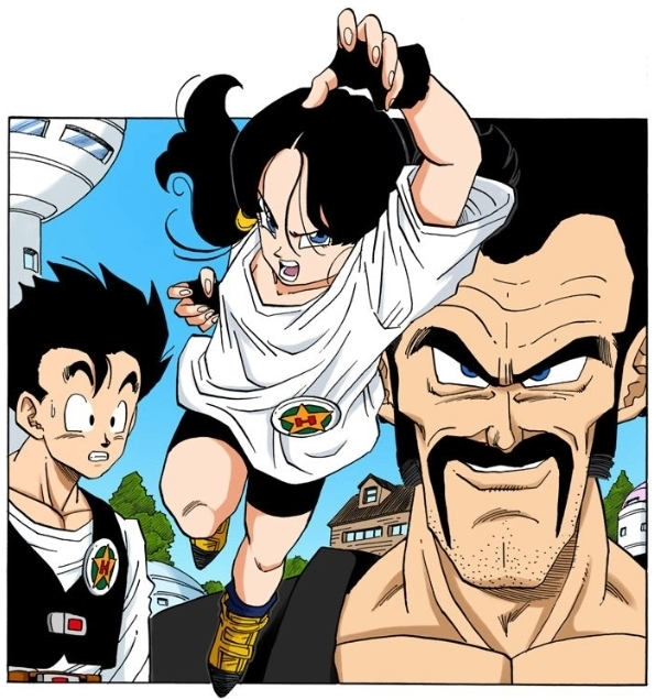 Videl Dragon Ball