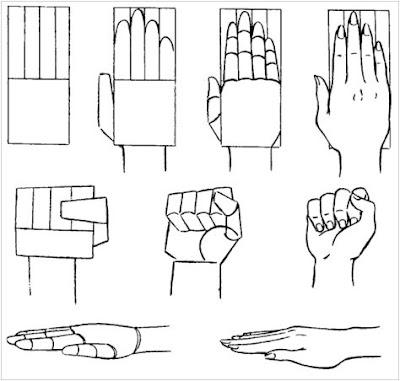 Aprendiendo a Dibujar Manos reales - Consejos