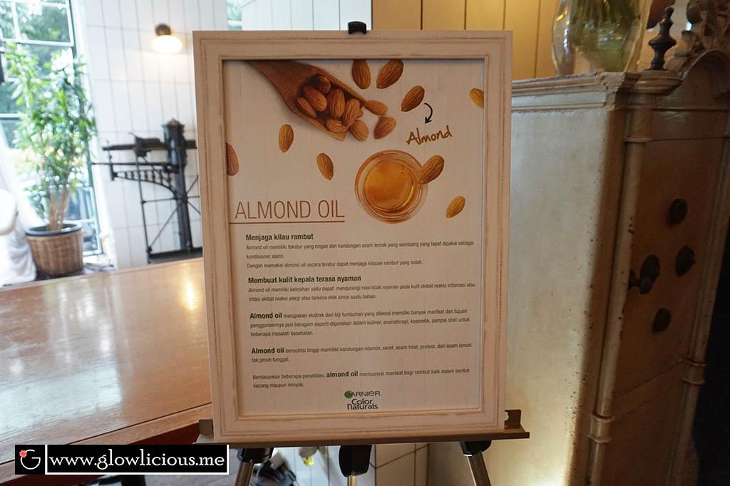 """Garnier Color Natural 3 Oils Launching Event  Yay, another lovely event to share for today :). Jadi beberapa minggu yang lalu tepatnya 25 Agustus 2016 kemarin aku menghadiri Garnier Color Naturals 3 Oil Launching Event di bla.  Sekilas Tentang Brand Garnier Garnier merupakan anak perusahaan kecantikan terkemuka di dunia, """"Loreal"""". Sejak penemuan dan peluncuran hair lotion Garnier pertama dari ekatrak tumbuh - tumbuhan padan tahun 1904 di Perancis, alam selalu menjadi sumber inspirasi dan inovasi bagi Garnier. Garnier dengan falsafahnya yang aku suka banget : """"Green Science, Green Thinking"""". Garnier juga bertujuan agar banyak kalangan masyarakat yang menggunakan produknya dengan berprinsip : """"Inovatif"""", """"Alami"""", """"Terjangkau"""".  Seperti yang pernah aku share pengalaman aku menggunakan Garnier Hair Color yang tidak merusak rambut dan bahkan merawatnya. Kalo 1 ingredient alami Olive Oil saja sudah bisa merawat rambut, apalagi terdapat 3 natural oil lainnya. Makin penasaran kan girls :)  Dalam acara ini turut hadir Mba Reny K. Agustia, Marketing Manager Garnier, PT Loreal Indonesia. Mba Reny juga menjelaskan bahwa Garnier Color Naturals 3 Oils ini mengandung 3 kali lebih banyak nutrisi, 3 oils yaitu Olive Oil, Coconut Oil dan Almond Oil yang akan membantu merawat rambut pada saat pewarnaan sekaligus menjadikan warna rambut berkilau indah alami.  dr. Gloria Novelita Sp.KK ikut menambahkan bahwa dengan adanya komposisi ke tiga oils tadi akan menghasilkan komposisi yang efektif dalam mencegah kerusakan rambut akibat pewarnaan.  Seperti yang kita ketahui ya girls, Olive Oil, Coconut Oil dan Almond Oil sudah lama digunakan untuk merawat rambut. Dengan kandungan vitamin A, E, antioksidan dan berbagai mineral lainnya yang dapat memperkuat dan menjaga kesehatan kutikula rambut. Sehingga rambut pasca pewarnaan tidak rusak dan bahkan memiliki kilau indah alami.  Seiring dengan banyaknya informasi yang beredar masih banyak perempuan Indonesia yang mempercayai mitos sebagai fakta. Na"""