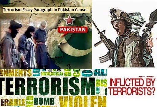essay on terrorism in pakistan Free essays from bartleby | terrorism terrorism is like a virus in the global world  everyone has a responsibility to eradicate terrorism terrorists has no.
