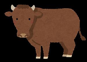 和牛のイラスト(日本短角種)