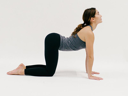 Cow Pose (YOGA)