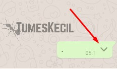cara melihat anggota grup whatsapp yang aktif