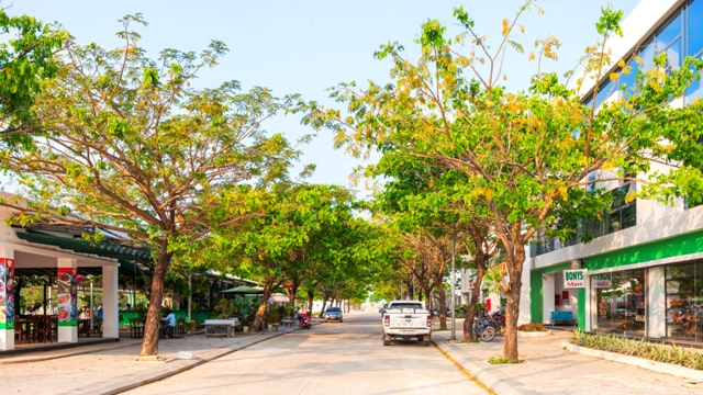 Đường nội khu tại Golden Hills, cây xanh phủ bóng mát