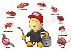 شركة مكافحة حشرات بالخرمة 0551493101