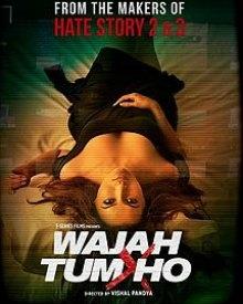 Wajah Tum Ho (2016) Hindi Movie DVDScr 350MB