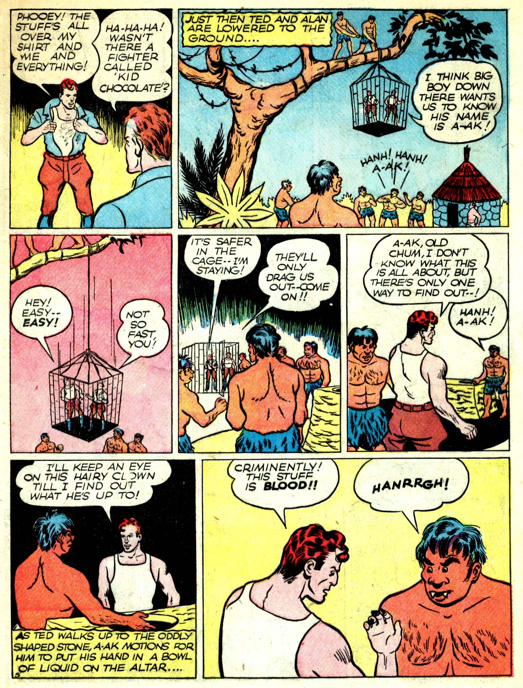 Read online All-American Comics (1939) comic -  Issue #11 - 33