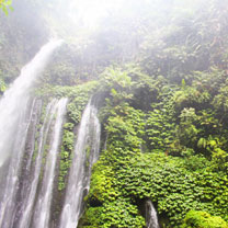 Senaru Half Day Tour - Mount Rinjani National Park
