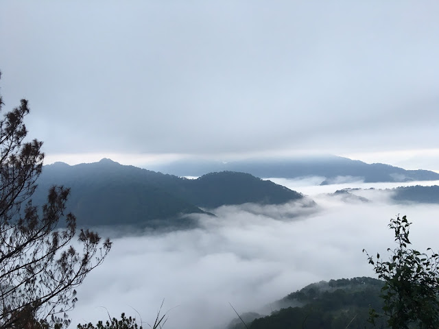 sea of clouds sagada