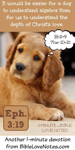 God's love, Bible, teach a dog algebra, God's love beyond our understanding