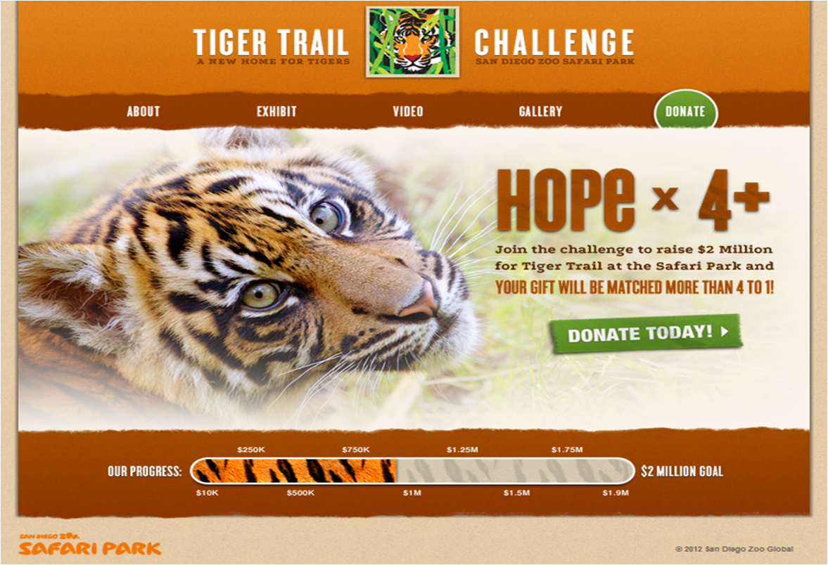 Whether You Make A Donation In Dylans Name Or Just Go To The Tiger Trail Challenge Website Makes No Difference Me What Matters Is That Donate
