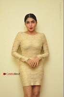 Actress Pooja Roshan Stills in Golden Short Dress at Box Movie Audio Launch  0142.JPG