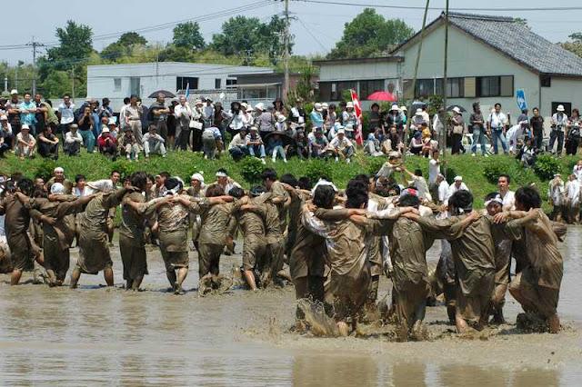 Seppetobe (Dance in Mud Rice Field), Hioki City, Kagoshima Pref.