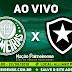 Jogo Palmeiras x Botafogo Ao Vivo 22/08/2018