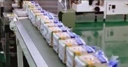 Teknik Proses Produksi Roti