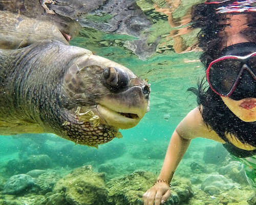 Travel.Tinuku.com Nglambor beach in Gunung Kidul as snorkeling paradise in Indian Ocean atoll lagoon as natural aquarium