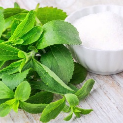 ACI Agro Solution Stevia Product, Stevia Cultivation, Stevia in India, Organic Stevia Cultivation