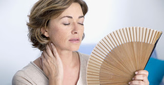 fitline-menopausa