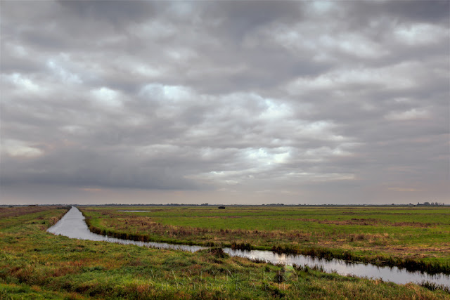 Flat Cambridgeshire fenland with the River Delph at Ouse Washes