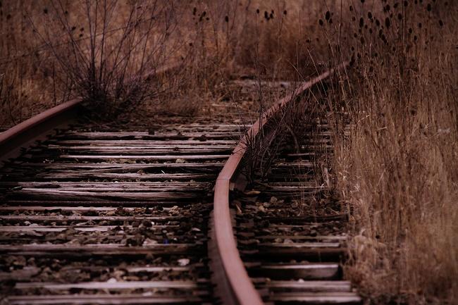 fot. Michael Weidner / unsplash.com CC0 1.0