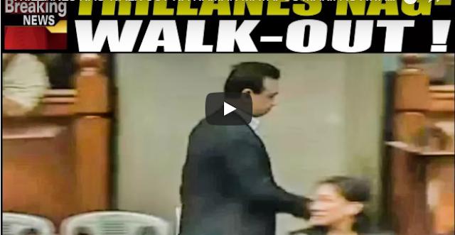 Trillanes Nag-Walk-Out Na Naman Matapos Makipag-Away Kay Gordon