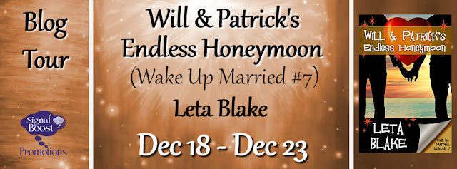Blog Tour: Q&A and Giveaway -- Leta Blake - Will & Patrick's Endless Honeymoon (Wake Up Married #7)