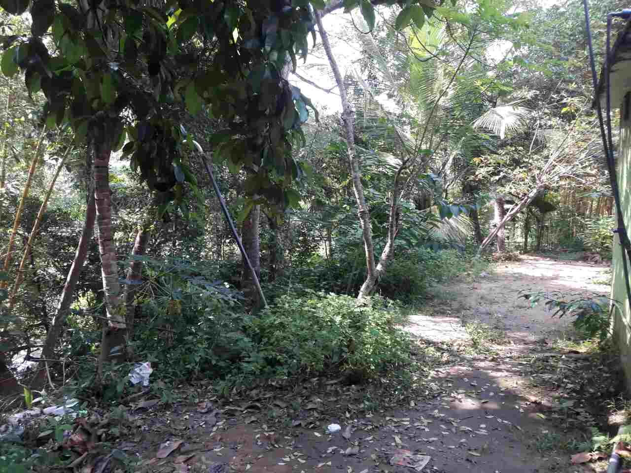 Land view - Kandy Land for sale