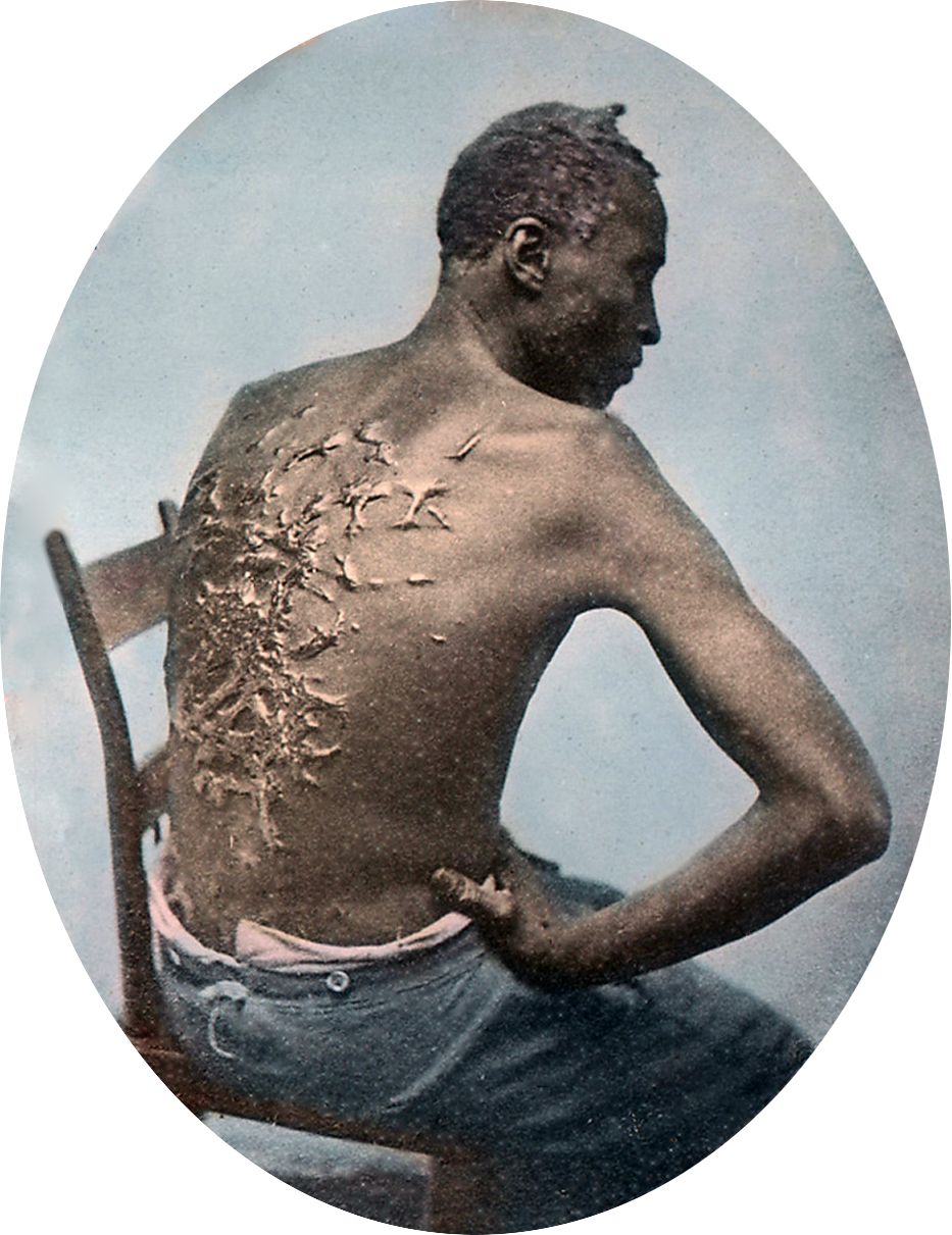 the shadowland journal as our man in charleston appears in the civil war s dirty secret it was always about slavery