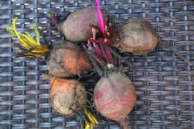 Beet Skordalia: Greek Almond and Sweet Potato Dip