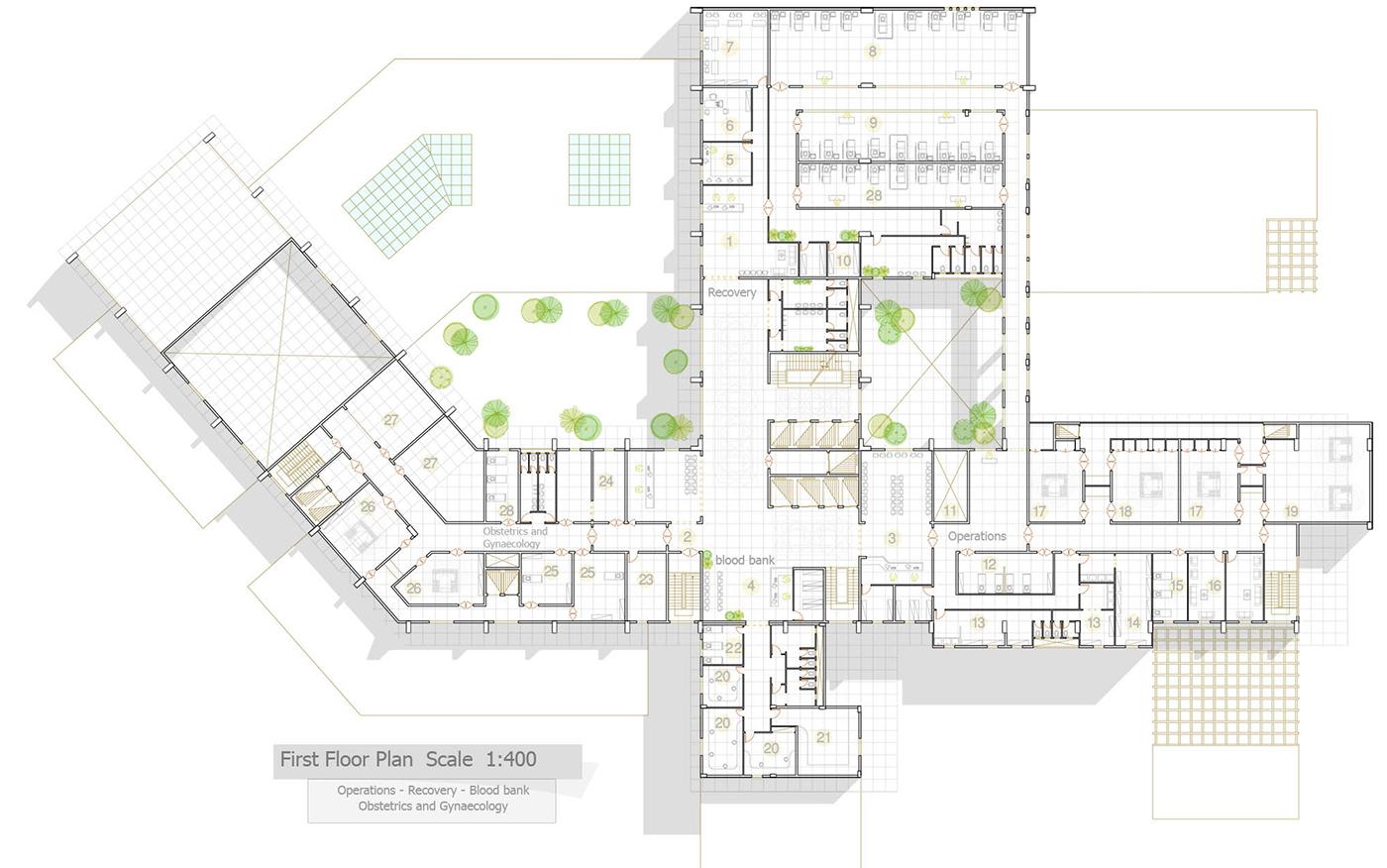 Business plan for Hospital