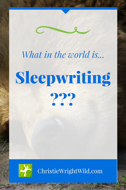 What is Sleepwriting? | sleep | writers write | writing habits | tips for writers | creativity | productivity | rejuvenation