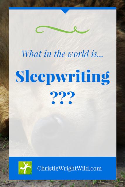 What is Sleepwriting? | sleep | writers write | writing habits | tips for writers | creativity | productivity | rejuvenation