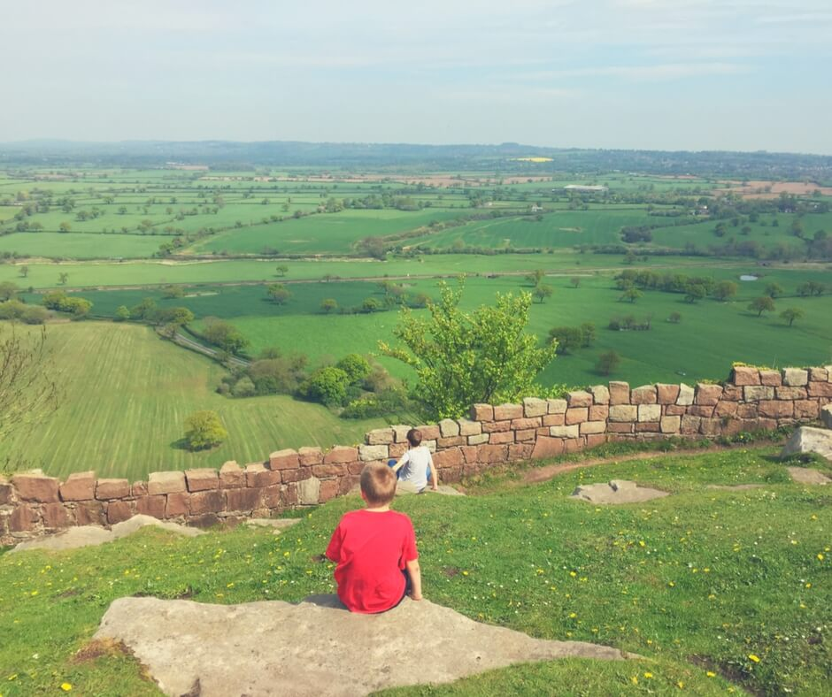 Two boys sit on rocks on the top of a huge hill looking over fields of green stretching into the distance. The younger boy, closest to the camera, wears a red t shirt, the older boy further from the camera,  wears a grey t shirt. A brick wall separates the boys from the fields.
