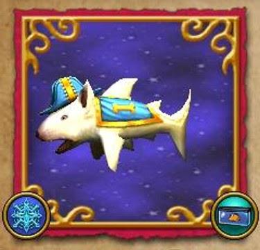 Pit Bull Shark