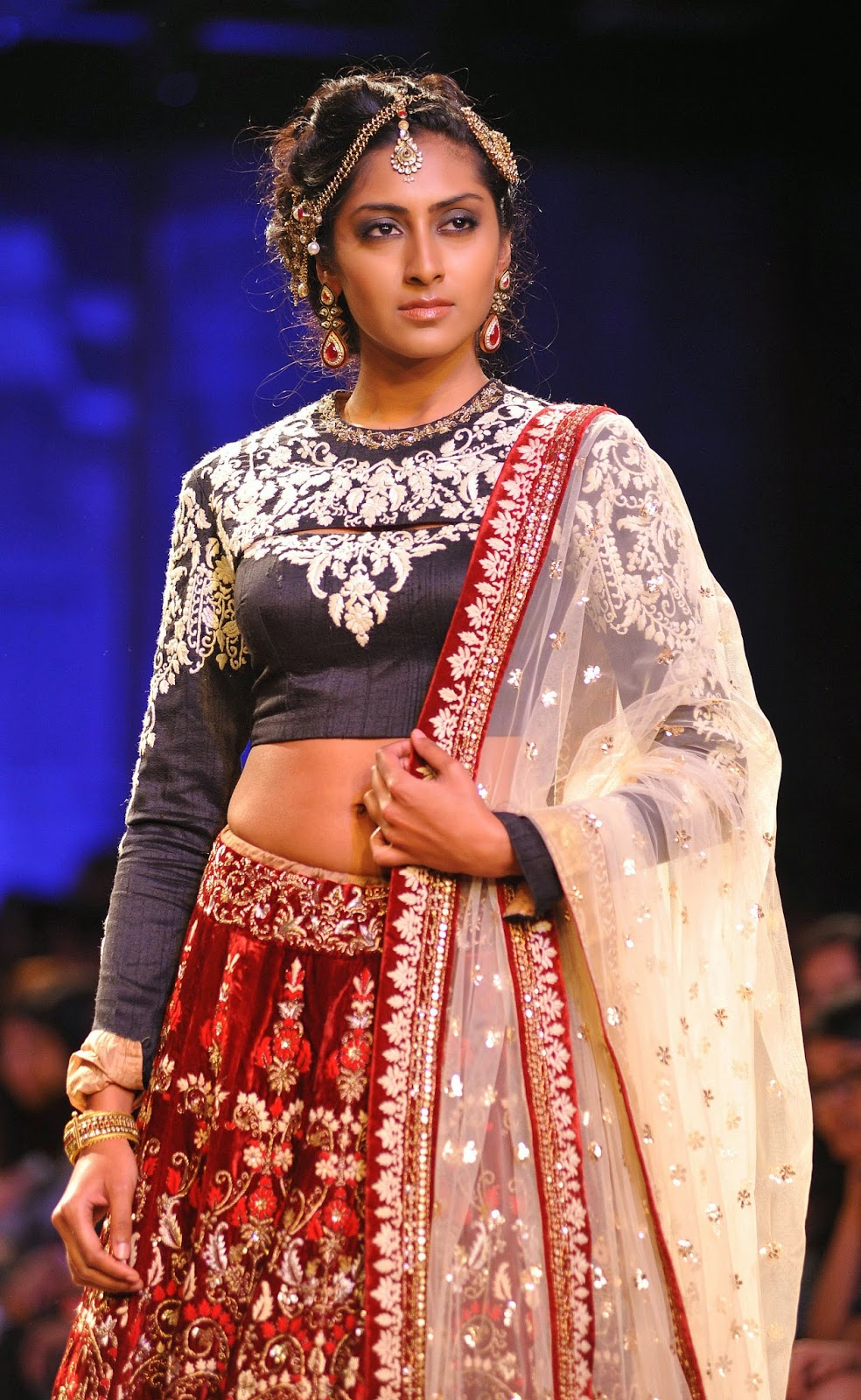 Lakme Fashion Week (LFW) 2014: HD Pictures