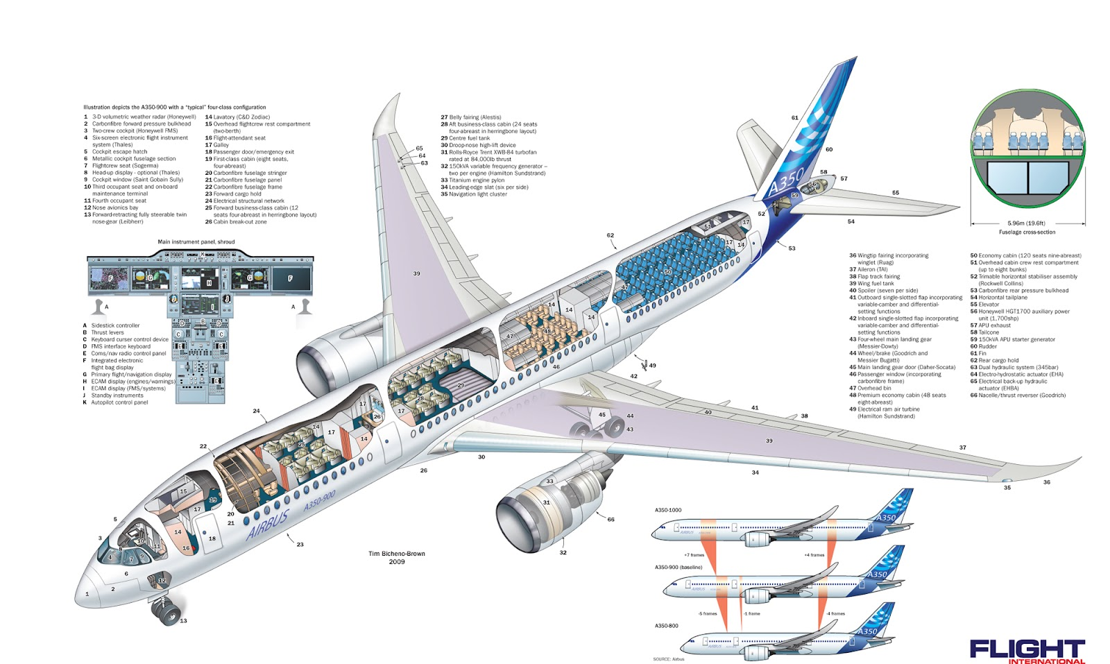 Beaver Skeleton Diagram Emg Pickup Wiring Airbus A350-900 Cutaway View ~ World Stewardess Crews