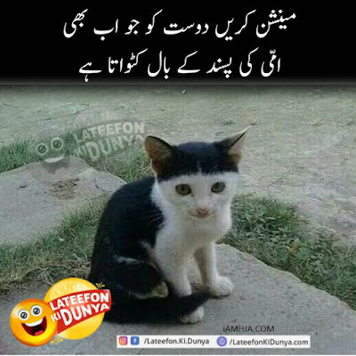 Lateefon Ki Duniya funny joke for hire cut