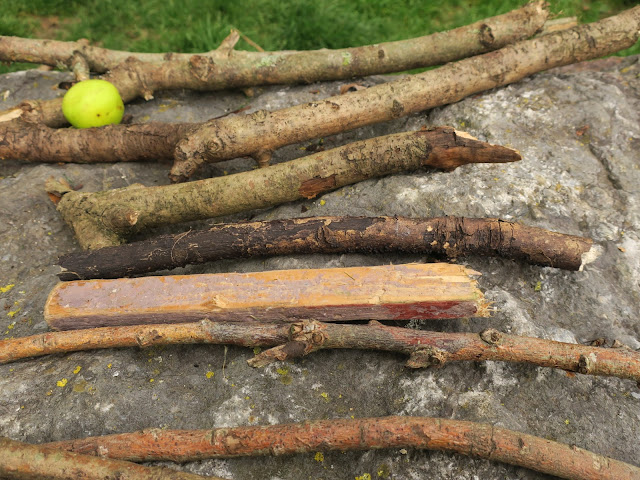 Sticks arranged in horizontal rows plus one apple on a rock