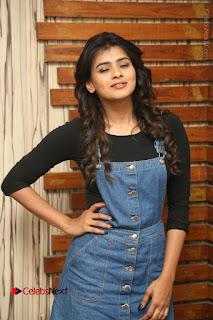 Actress Hebah Patel Stills at Nanna Nenu Naa Boyfriends Movie Interview  0009.JPG