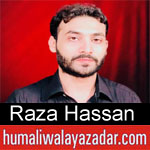 https://aliwalayazadar.blogspot.com/2018/09/raza-hassan-nohay-2019.html
