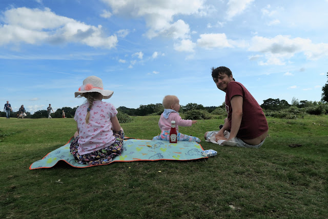 family picnic with chips