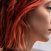 Sociedade Nacional de Críticos de Cinema elege Lady Bird - A Hora de Voar como o melhor filme de 2017