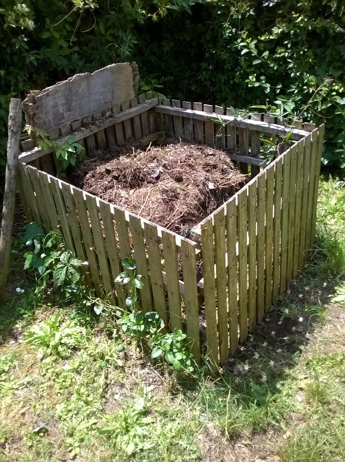 Vita da vivere trucchi e curiosit larve bianche e for Compostiera da giardino