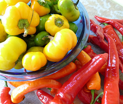 Doe Hill Peppers and Jimmy Nardello Peppers