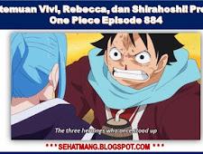 Pertemuan Vivi, Rebecca, dan Shirahoshi! Preview One Piece Episode 884