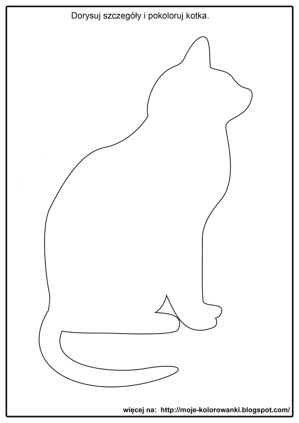 Koty O Magicznych Futrach Co I Jak