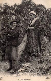 Cpa Les vendanges en Auvergne