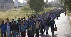 Σοκ προκαλούν οι καταγγελίες των αστυνομικών στα σύνορα του Έβρου οι οποίοι αναφέρουν ότι όχι μόνο οι αλλοδαποί παράνομοι μετανάστες περνούν...