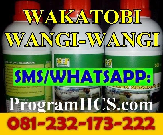 Jual SOC HCS Wakatobi Wangi-Wangi