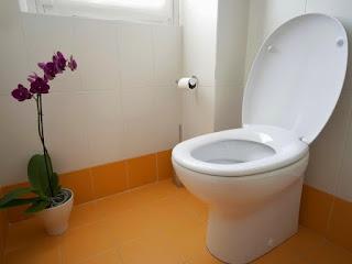 Ποιος είπε ότι με το καζανάκι καθαρίζει η τουαλέτα;
